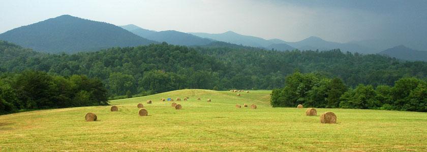farm_mound